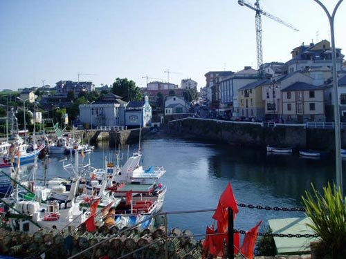Vistas del puerto, con varios barcos y las casas al fondo - Se abre en una nueva ventana