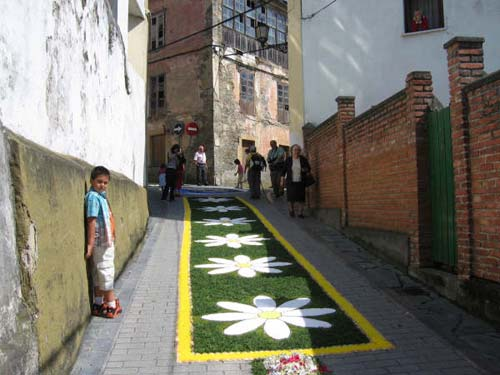 Calle decorada con flores, el fondo es verde y se forman figuras de margaritas - Se abre en una nueva ventana