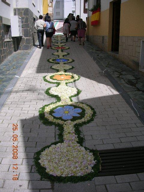 Circulos de flores intercalando flores de sal teñido - Se abre en una nueva ventana